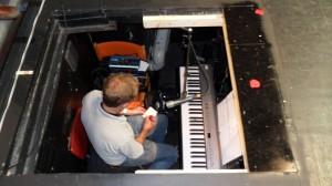 Björn har flyttat ner i orkesterdiket.
